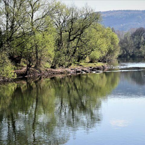 River Usk – Ysbytty Beat